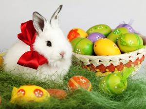 stratford_easter_bunny